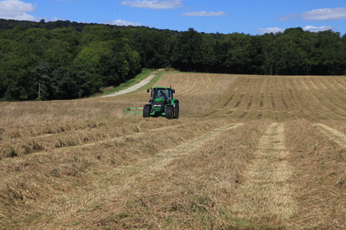 First harvest at former inert landfill site